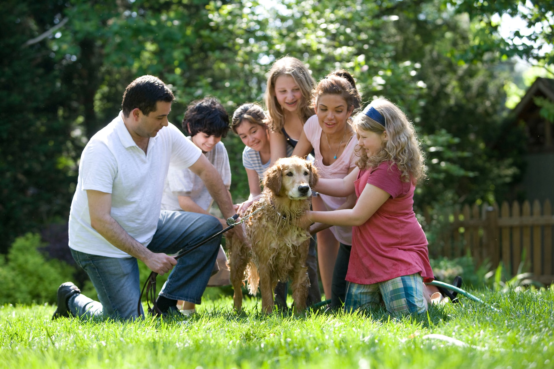 joint family playing with dog