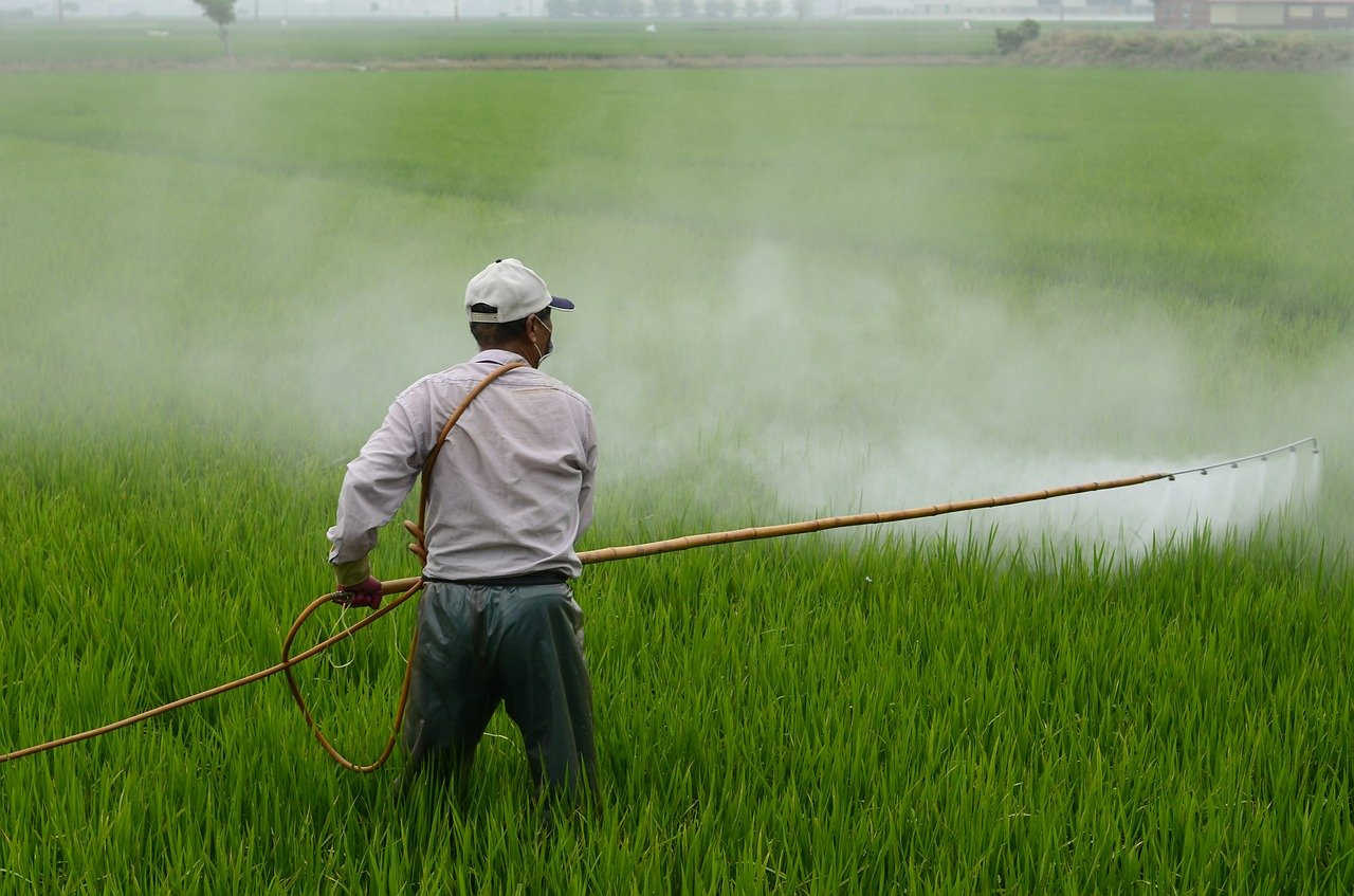 Pesticide Residue - Sprinkling Pesticides